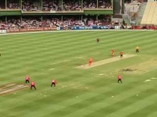 IH Cricket photo